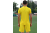 Комплект футбольной формы сборной Украины Joma UKRAINE - желтый (футболка+шорты)